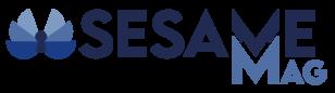 Sesame Mag – Matériel informatique neuf et reconditionné à Dinan